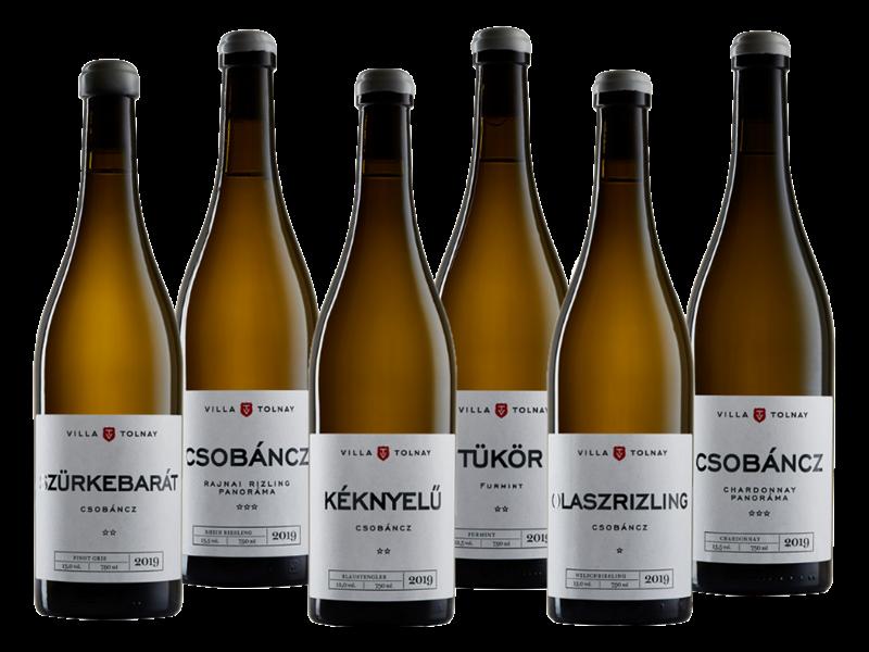 6 szőlőfajta 6 bor - Villa Tolnay Borház