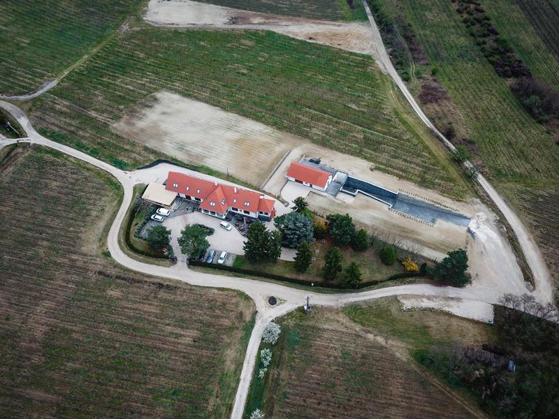 Villa Tolnay Borház album